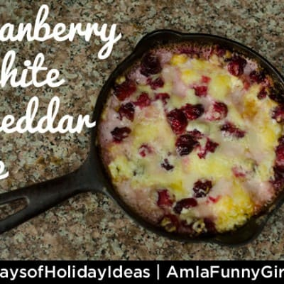 Day 8: Cranberry-White Cheddar Dip #recipe #25daysofholidayideas