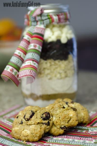 jar cookie 01
