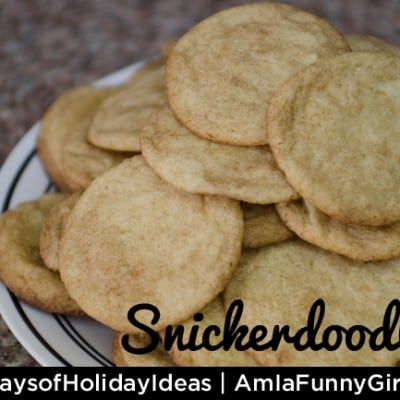 Day 16: Amazing Snickerdoodles #25DaysofHolidayIdeas