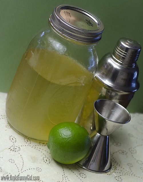moscow mule ginger sumple syrup