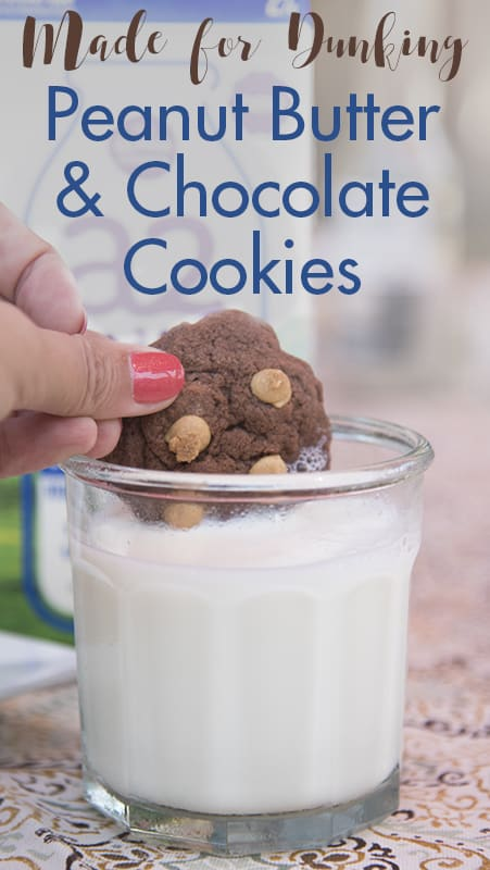 Peanut Butter and Chocolate Cookies for Dunking in Milk