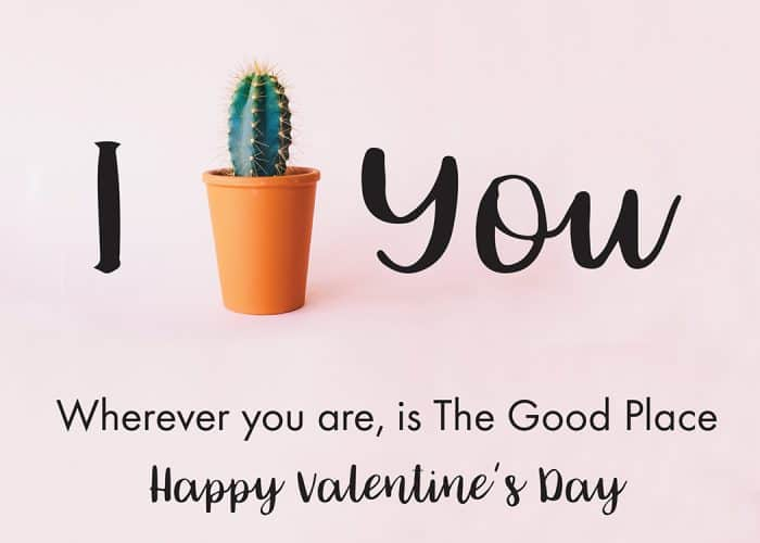 The Good Place Valentine: I Cactus You