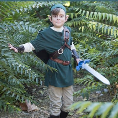 DIY Link from Zelda