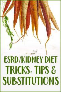Renal-friendly diet options