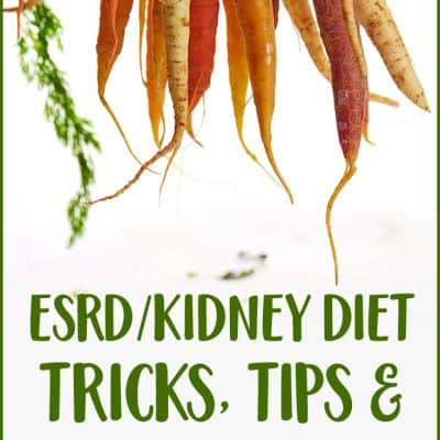 Renal-friendly diet options