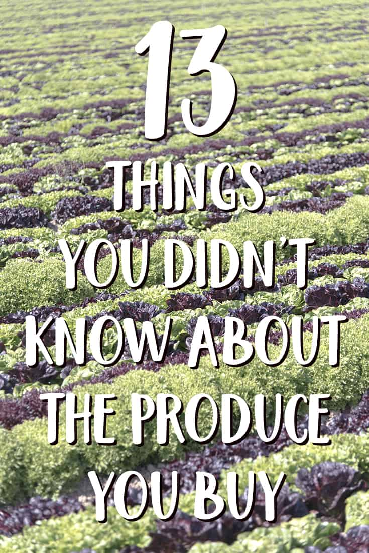 13 Things You Didn't Know about the Produce You Buy