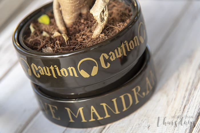 Close Up Of Label Mandrake Harry Potter More Than Thursdays