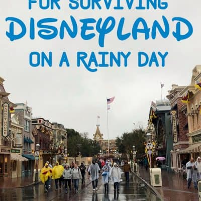 Disneyland in the rain is still magical