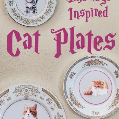 Professor Umbridge Cat Plates