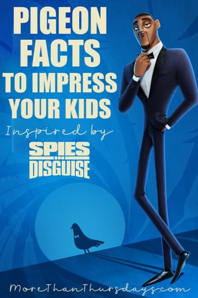 Pigeon Facts inspired by Spies in Disguise